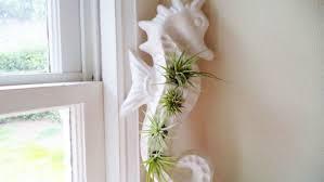 seahorse vertical wall planter vertical planter nautical decor