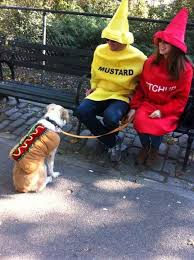 Martha Stewart Dog Halloween Costumes 50 Creative Halloween Costume Ideas Pets Humans