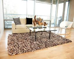 Carpet Ideas For Living Room by Living Room Shag Area Rugs With Large Glass Windows And Glass