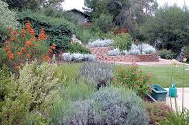 San Diego Landscape by Pacific Horticulture Society Landscaping With Natives In San Diego