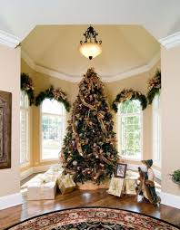 tree somtuous tree window frames and decorating