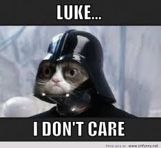 Funniest Memes 2013 - funniest cat memes 2013 image memes at relatably com