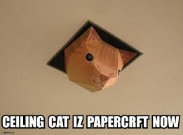 Ceiling Cat Meme - cat papercraft by tubbypaws