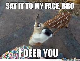 deer memes best collection of funny deer pictures