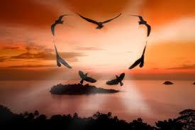imágenes de buenos días para mi gran amor top mensajes de buenos días para mi amor frases romànticas de