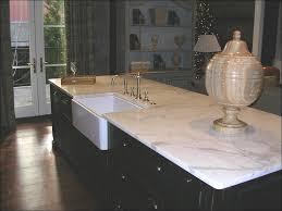 Quartz Kitchen Countertops Reviews Kitchen Quartz Countertops Colors Quartzite Etching Cheap