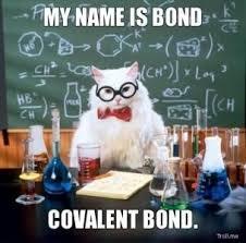 Troll Meme Generator - my name is bond covalent bond science chemistry cat troll