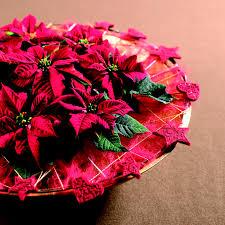 www flowers the best christmas flowers flowers org uk