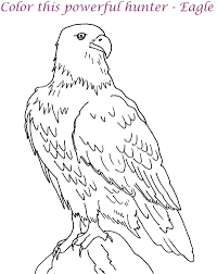 coloring eagle coloring