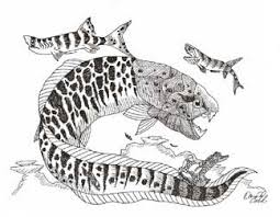 devonian period age fish