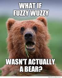 Funny Bear Memes - meme world archive the project avalon community forum