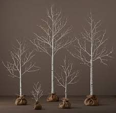 lighted birch tree winter trees