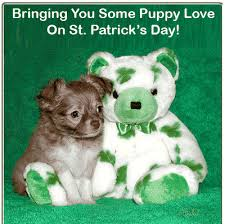 55 most beautiful saint patrick u0027s day wish pictures and photos