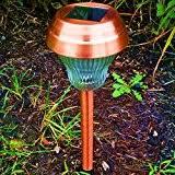 Copper Moon Landscape Lighting - amazon com copper landscape lighting outdoor lighting tools