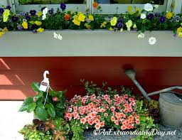 What To Plant In Window Flower Boxes - how to plant a window box garden tutorial u0026 planting tips an