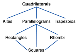 quadrilaterals at a glance