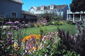 yardsmart how to start your own perennial flower garden theet com