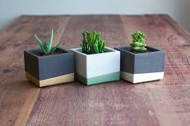 design blumentopf blumentopf design für kleine pflanzen in verschiedenen stilen