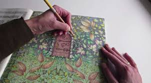 coloring books and the rise of the pan market the