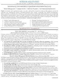 Sample Inside Sales Resume by Senior Executive Resume Sample Free Resumes Tips