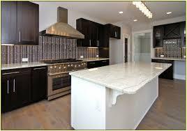 Kitchen Cabinet Trends 2014 by Kitchen Cabinet Hardware Trends Home Design Ideas