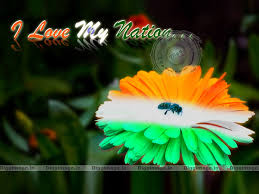 My National Flag Indian Flag On Flower Wallpaper For Pc From Diggimage In D I G G