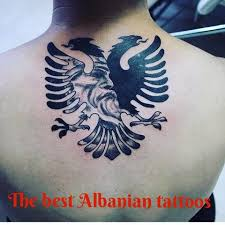images about albaniatattoo tag on instagram