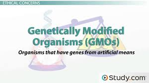 ethical and safety concerns for dna technology video u0026 lesson