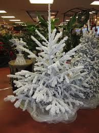 christmas trees douglas fir natural flocked u2013 huntersgardencentre com