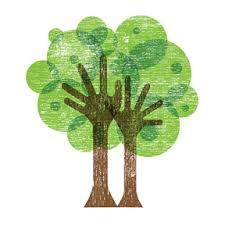 a tree grows 159 avenue
