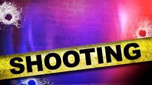salon customer shot after gun goes off in gun shop next door