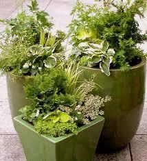 5367 best planters garden pots images on pinterest flowers
