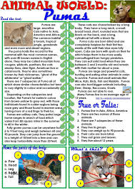 554 best reading comprehension activities images on pinterest