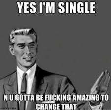 Funny Single Memes - funny single memes yes im single n u gotta be fucking amazing to