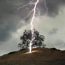 lightninged