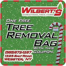 wilbert u0027s christmas tree farm webster ny