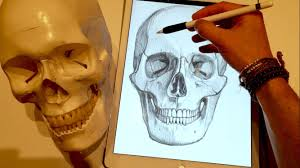 how to draw a skull on ipad pro with apple pencil youtube