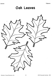 traceable leaf patterns coloring home