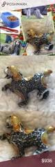owning an afghan hound framed afghan hound 2 for the dog lover pinterest afghan