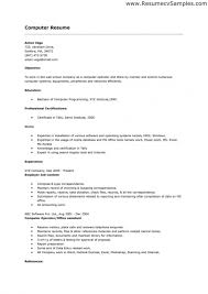Sample Of Good Resume by How Should A Resume Look 17 Sample Of Resume Writing Uxhandy Com