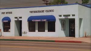 Blue Awning Day Hold Across Small One Story White Stucco Building Pet Store