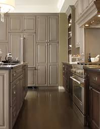 Omega Dynasty Kitchen Cabinets by Signature By Omega Cabinets Reviews Gallery Of Hgtv Painting