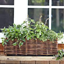 Indoor Herb Pots Window Box - 46 best herb garden ideas images on pinterest garden ideas