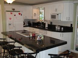 Economy Kitchen Cabinets Granite Countertop Cabinet End Panels Dishwashers Ottawa