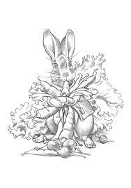 charles santore peter rabbit u0026 benjamin bunny coloring cards