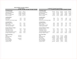 Restaurant Balance Sheet Template 3 Pro Forma Balance Sheet Exle Procedure Template Sle