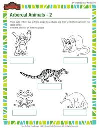 arboreal animals u2013 2 u2013 life science worksheets for second grade