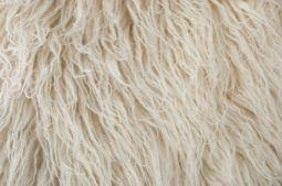 Cleaning Wool Area Rugs Rug How To Clean A Wool Rug Yourself Zodicaworld Rug Ideas