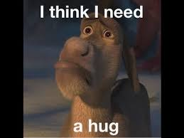 i need a donkey i think i need a hug personal space pinterest donkey