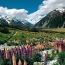 ニュージーランド:南西ニュージーランド(